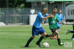 kreisentscheid-im-grundschulfussball-2019-g98440
