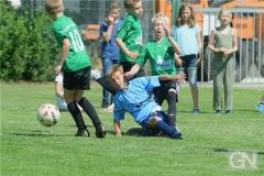 kreisentscheid-im-grundschulfussball-2019-g98442