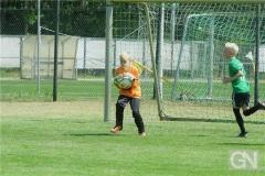 kreisentscheid-im-grundschulfussball-2019-g98450
