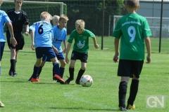 kreisentscheid-im-grundschulfussball-2019-g98472