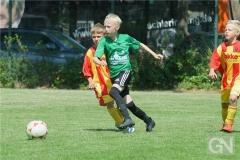 kreisentscheid-im-grundschulfussball-2019-g98475